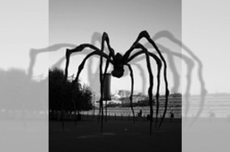 Ode al ragno